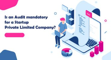 Company audit